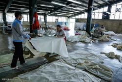 کارخانه های بزرگ زخم خورده «خصوصی خواری»