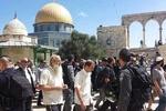 یورش شهرک نشینان صهیونیست به مسجد الاقصی