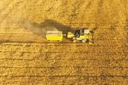 وضعیت زمینهای ایران برای کشاورزی/ چند درصد زمینها مطلوب نیستند