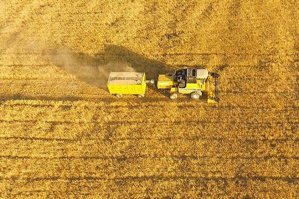 Türkiye ile Katar tarımda iş birliği yapacak