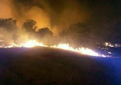 شدت وزش باد مانعی برای مهار آتش سوزی البرزکوه جهرم