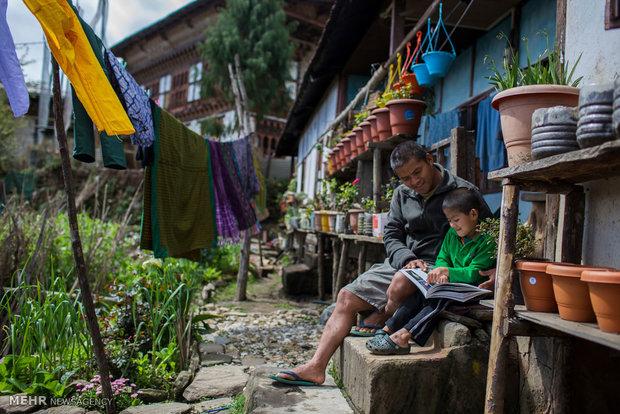 در جستجوی ببرهای بوتان