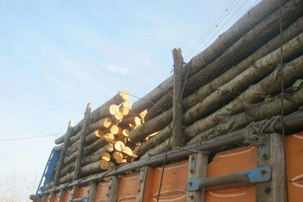 کشف بیش از ۵۰ تن چوب قاچاق در شهرستان طارم