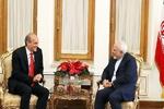 دیدار ظریف با وزیر برنامه ریزی ونزوئلا