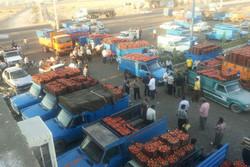 صادرات ٧٧ هزار تن محصولات کشاورزی از مرز مهران به عراق