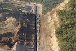 گردهمایی فعالان محیط زیست برای احیای جنگلهای عثمانوند