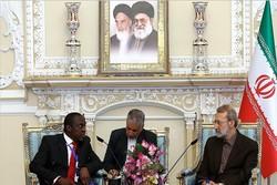 دیدرا لاریجانی با نائب رئیس مجلس غنا