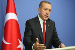 Erdogan defends ancestor attacked by UAE foreign min.