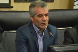 علی جوان -مدیرکل ورزش و جوانان استان زنجان - کراپشده