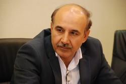 جشنواره «گردو» در سلسله برگزار میشود