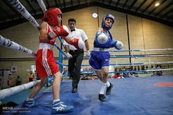 بطولة ملاكمة الكبار تنطلق في السادس والعشرين من اكتوبر