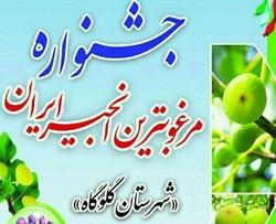 چهارمین جشنواره مرغوبترین انجیر ایران در گلوگاه آغاز شد