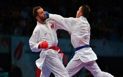 Iran bags two golds at intl. karate tournament