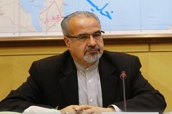 US domestic affairs in deep turmoil: Iranian MP