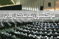 فراکسیون نمایندگان ولایی مجلس