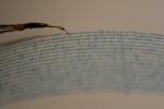 زلزله  ۴.۳ ریشتری «بروجرد» را لرزاند