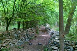 استفاده از همه ظرفیتها برای توسعه گردشگری در روستای قاهان