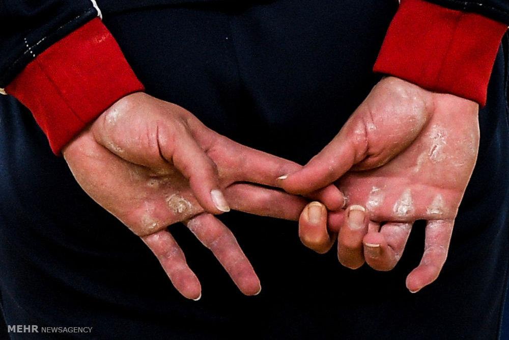 برندگان مسابقه عکاسی آندری استنین