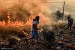 یونان کے جنگلات میں آگ لگ گئی