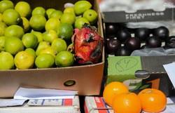 کشف بیش از ۵۲۰۰ کیلو میوه قاچاق در یزد
