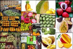 تورم کالاهای زراعی و دامی اعلام شد/افزایش۴درصدی تورم انواع میوه