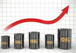 تقاضای نفت درحال افزایش است/قیمت افزایش مییابد
