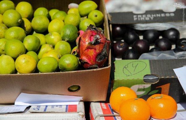 توقیف ۴ تن میوه قاچاق در یزد