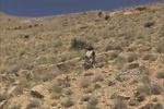 """""""داعشي"""" يسلم نفسه لحزب الله ويدل على مكان العسكريين اللبنانيين المخطوفين"""