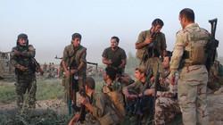 Peshmerga warns against intervention in Kurdistan affairs