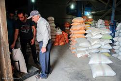 ۵۸۰ تن انواع برنج در استان سمنان توزیع میشود