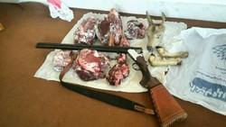 گوشت شکار