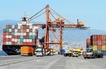 صادرات ۱.۲ میلیارد دلاری غله و حبوبات از ترکیه