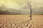 اثرات بلاهای طبیعی ناشی از تغییر اقلیم از توان ما فراتر رفته است