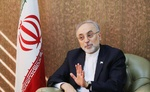 No obligations beyond agreements: Iran's nuclear chief