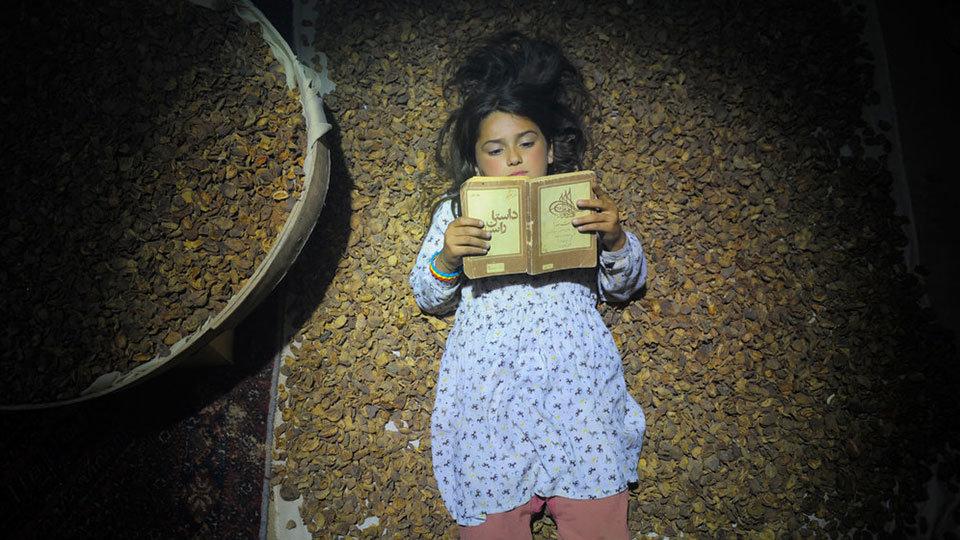 Sydney Persian film festival unveils official lineup