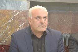 سید حسن میرعماد  - کراپشده