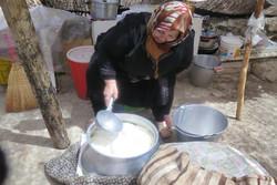نقش اقتصادی زنان عشایر در ایل سنگسر بررسی شد