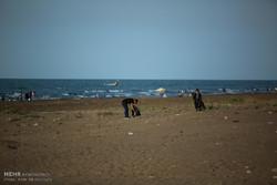 طرح پاک سازی ساحل بندر بوشهر اجرا شد