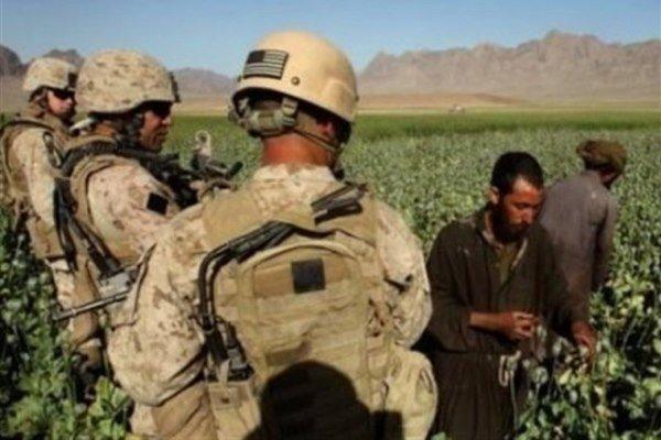 ۶۰ درصد درآمد گروه طالبان از قاچاق مواد مخدر تامین می شود