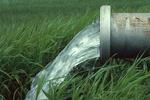 طرح توسعه سامانه های نوین آبیاری سرعت گرفت