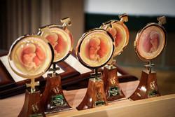 جایزه رویان