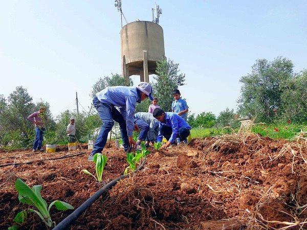 FAO promotes food education in Syrian schools