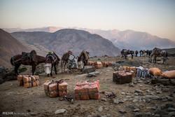 الجيش الباكستاني: الحدود مع إيران ستتحول إلى ممرات سلام وصداقة