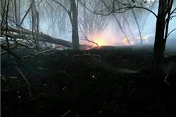 حضور گروه های جهادی قیر و کارزین در مهار آتش ارتفاعات