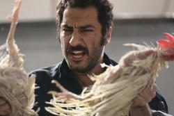 تحسین ورایتی از بازی نوید محمدزاده در «بدون تاریخ، بدون امضا»