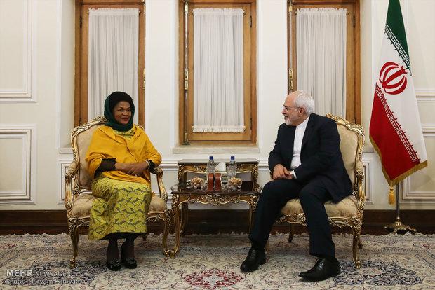 دیدار رئیس مجمع نمایندگان آفریقای جنوبی با وزیر امور خارجه