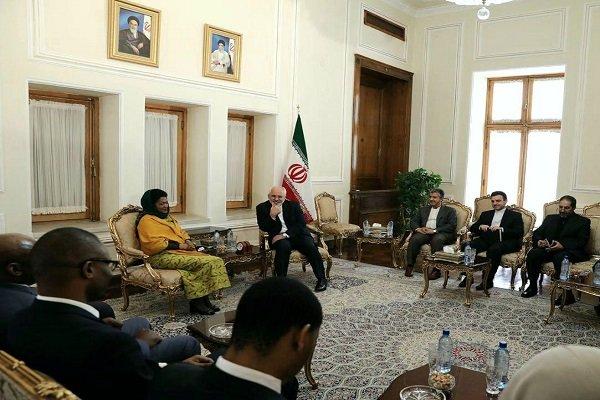 Iran, reliable partner of S Africa in ME: Zarif