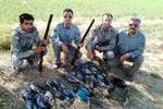 دستگیری ۹ شکارچی غیرمجاز در مازندران