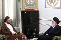 Iran's support influential in Iraq's victory