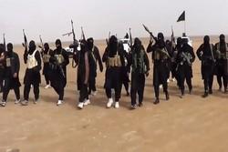 حماس شماری از سرکردگان داعش در نوار غزه را بازداشت کرد